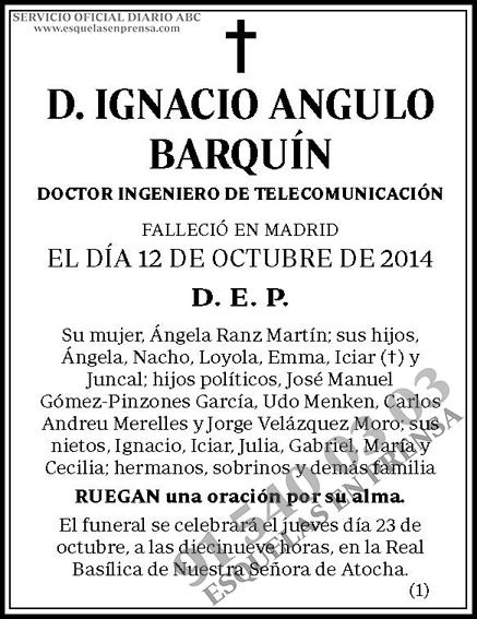 Ignacio Angulo Barquín